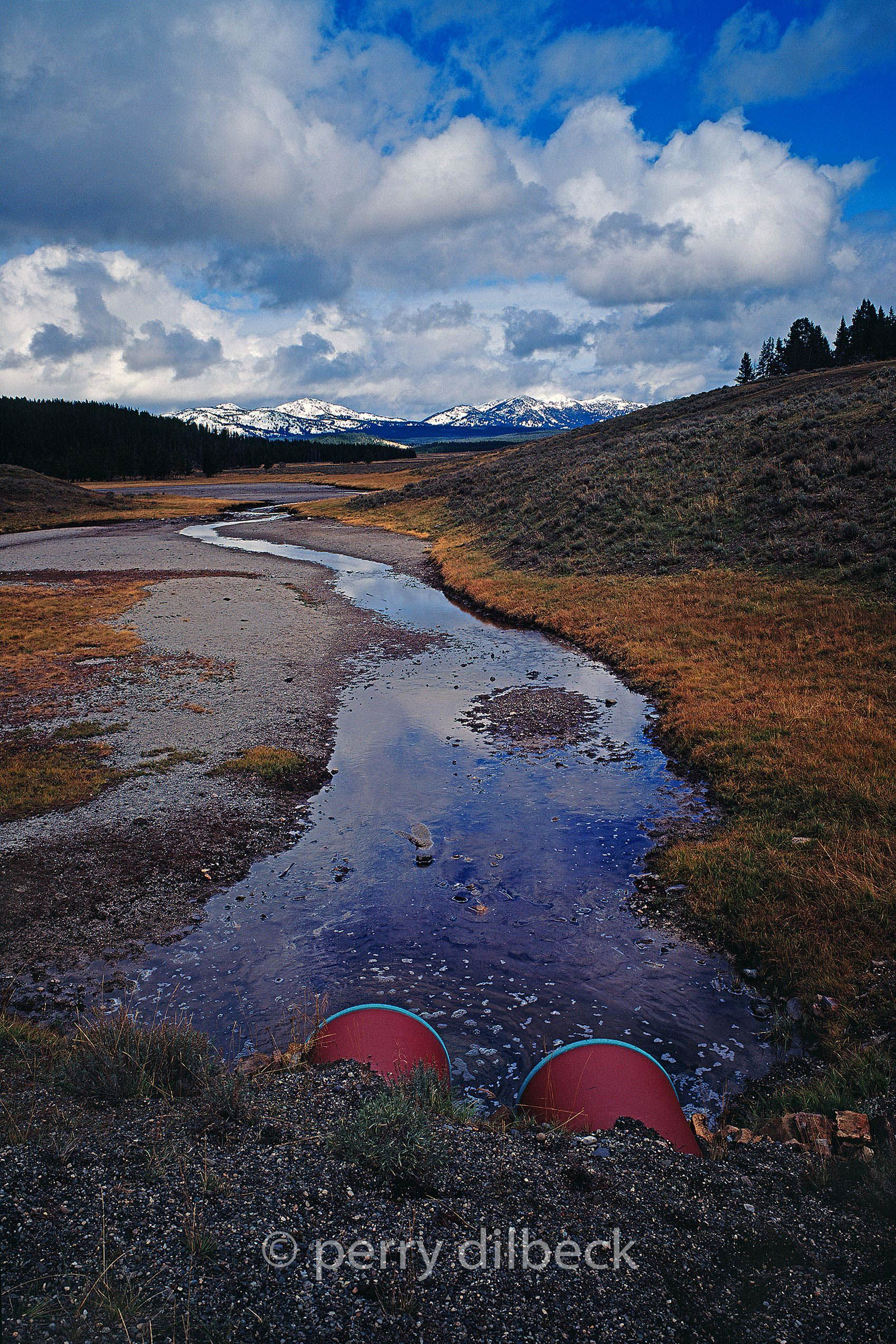 3a69yellowstone19smallSHARP.jpg