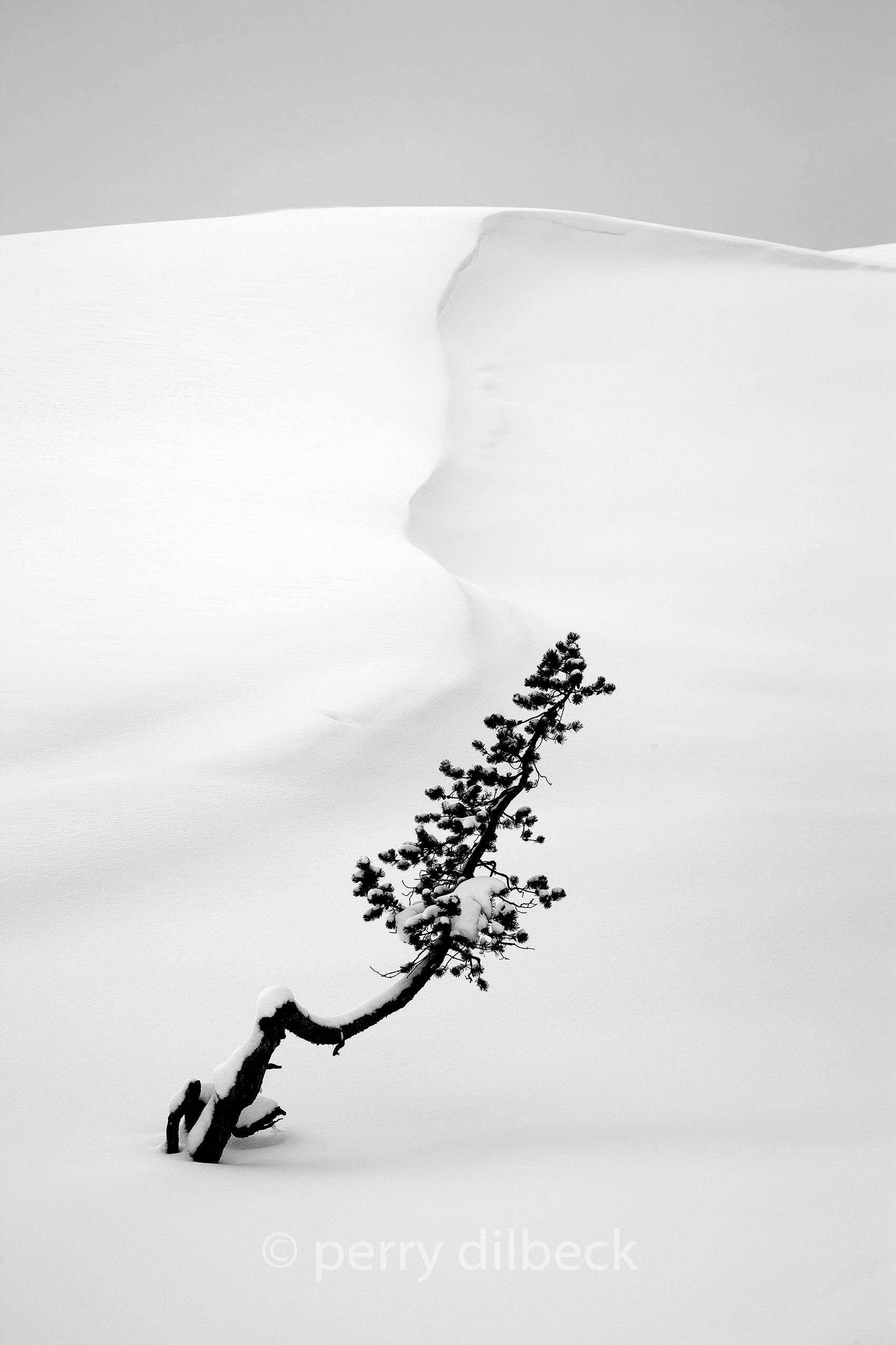 snowpassb.jpg