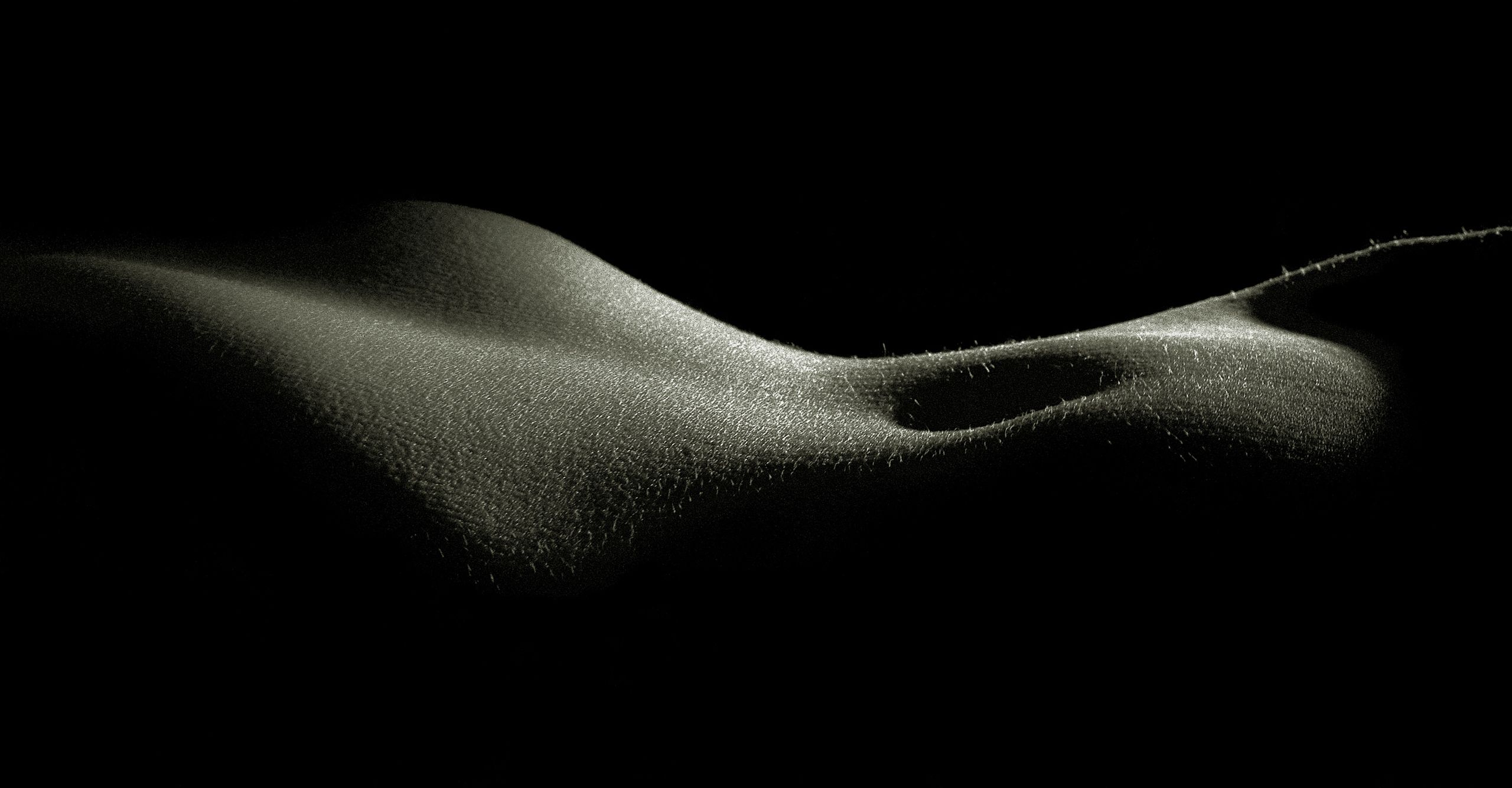 bodyscape.jpg
