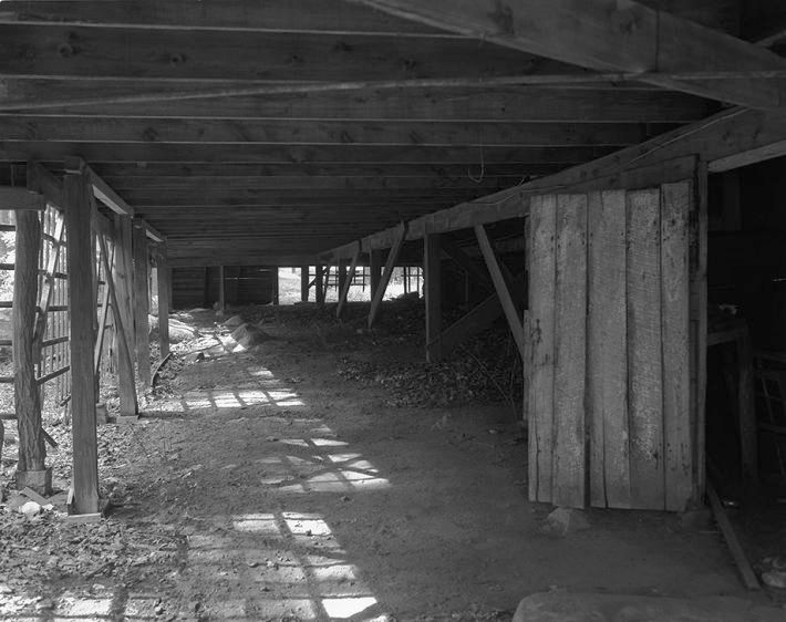 Dirt Cellar      2007