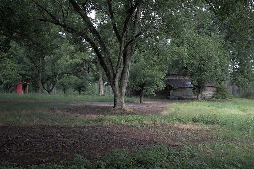 Summer Barn  2012