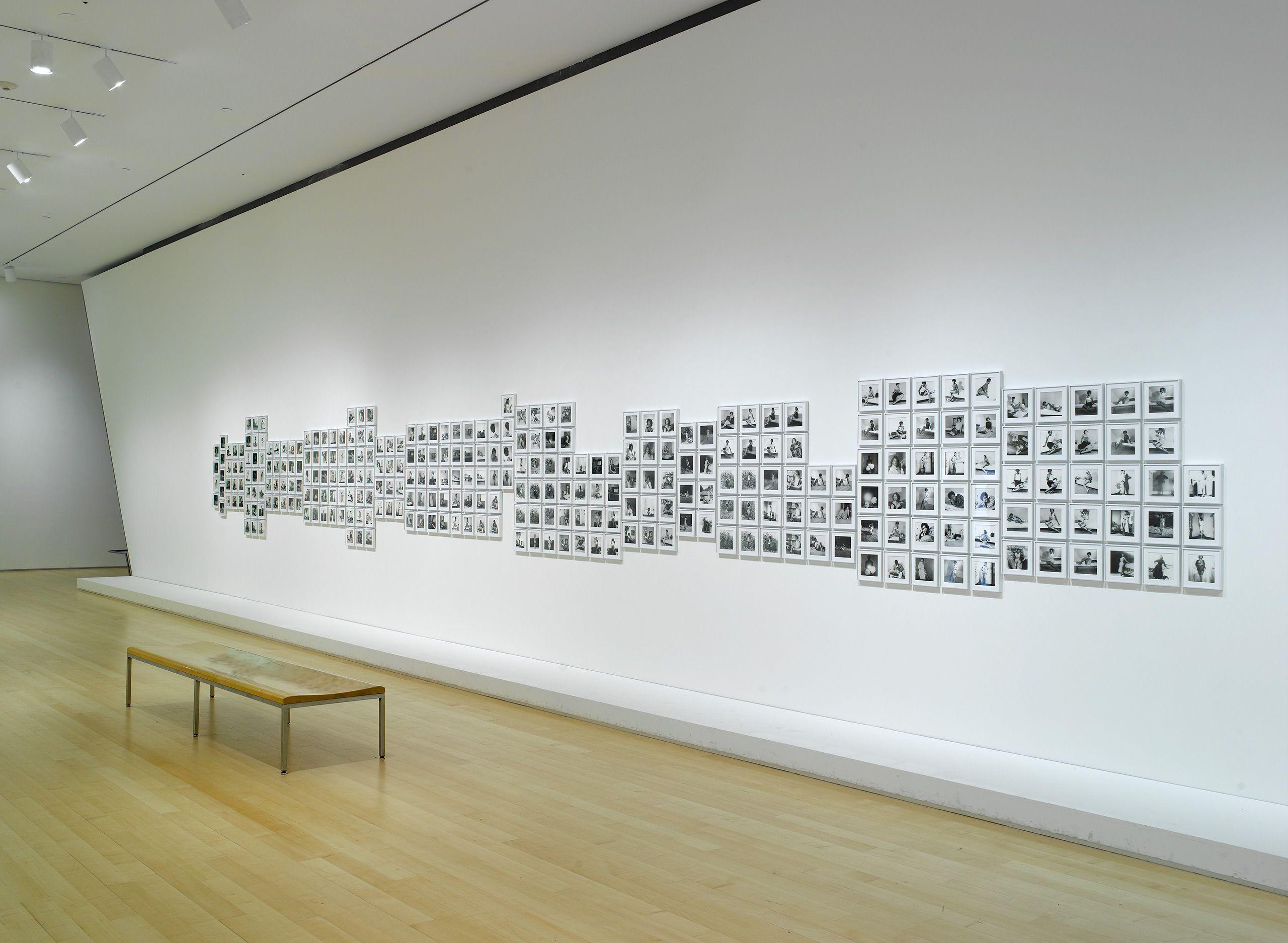"""Lorna Simpson: Gathered"", Brooklyn Museum, Brooklyn, NY 2011"
