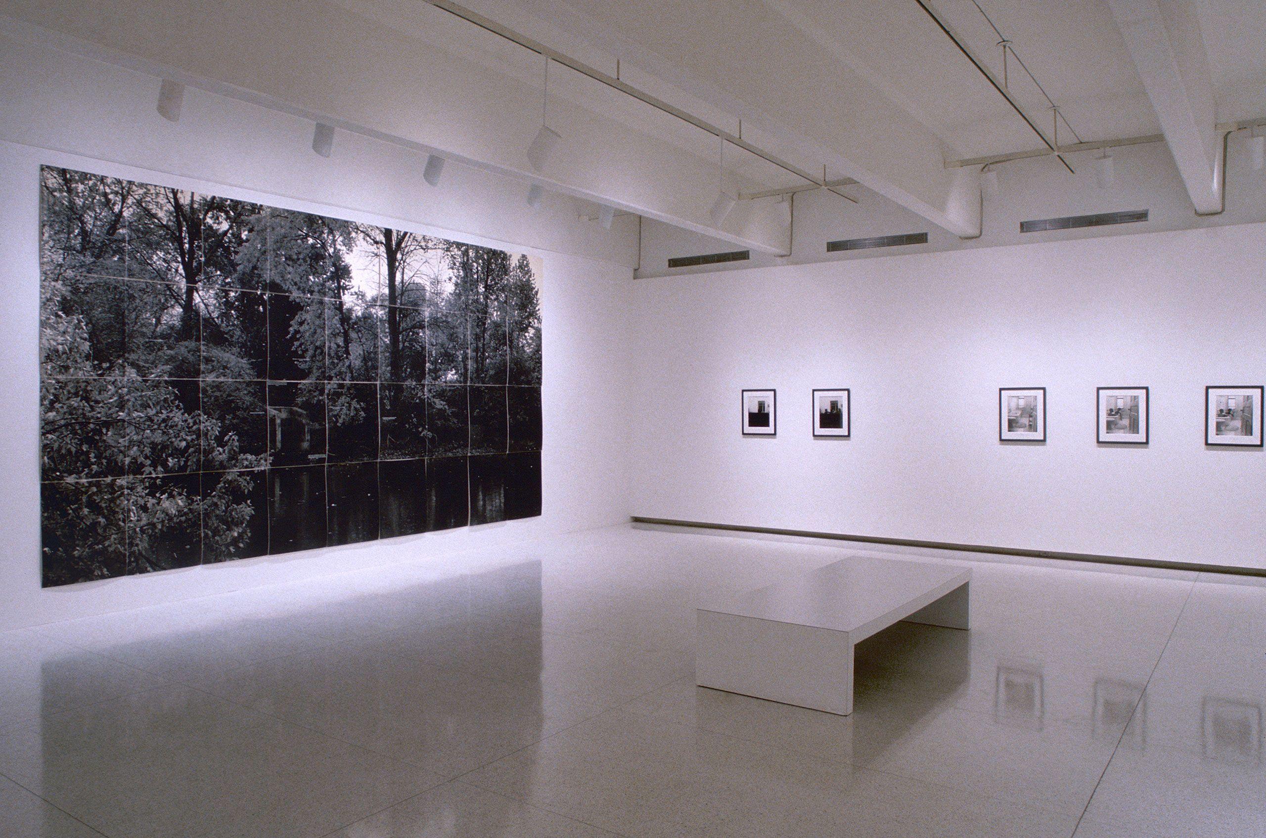 """Scenarios: Recent Work by Lorna Simpson"", Walker Art Center, Minneapolis, MN 1999"