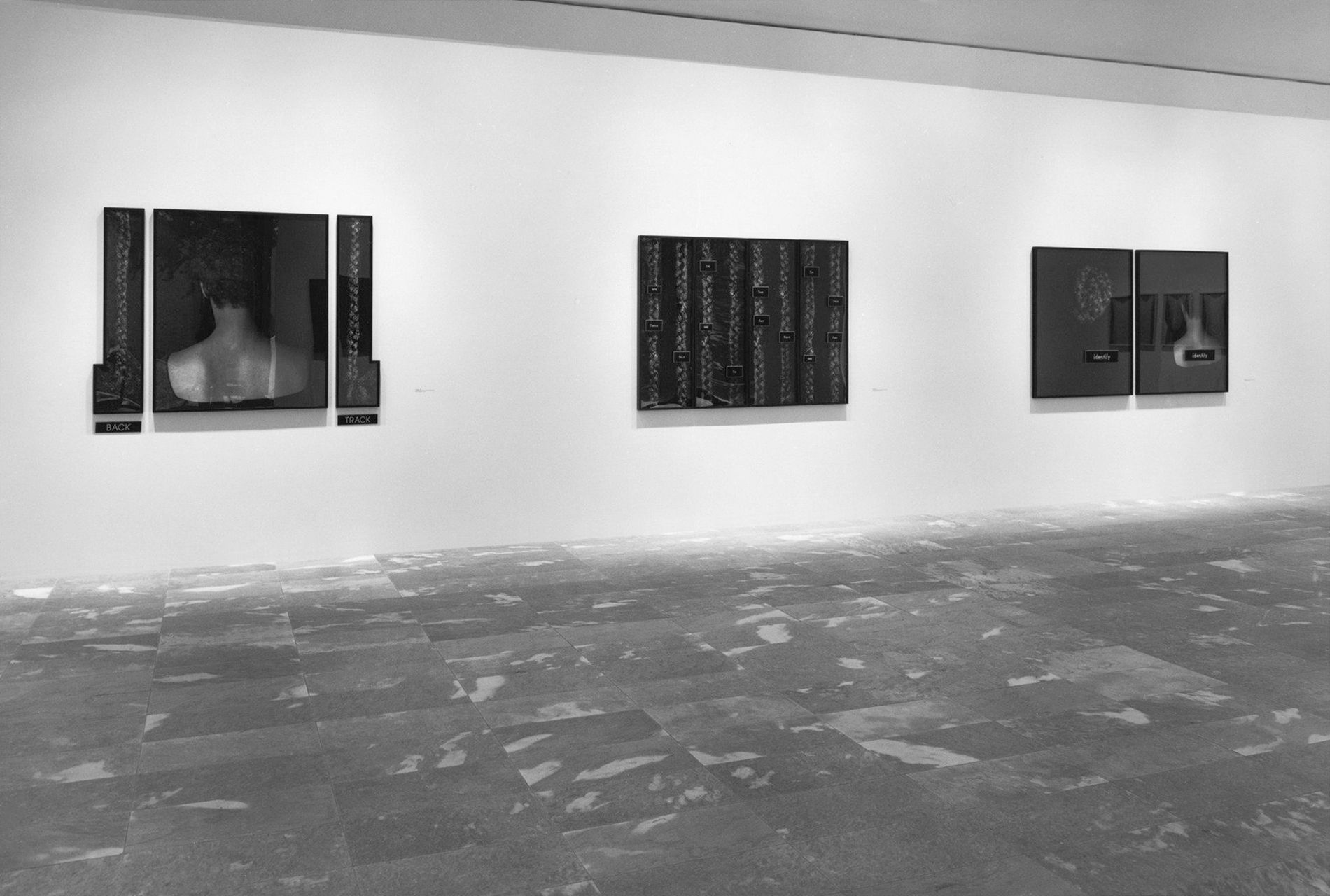 Lorna Simpson: Projects 23