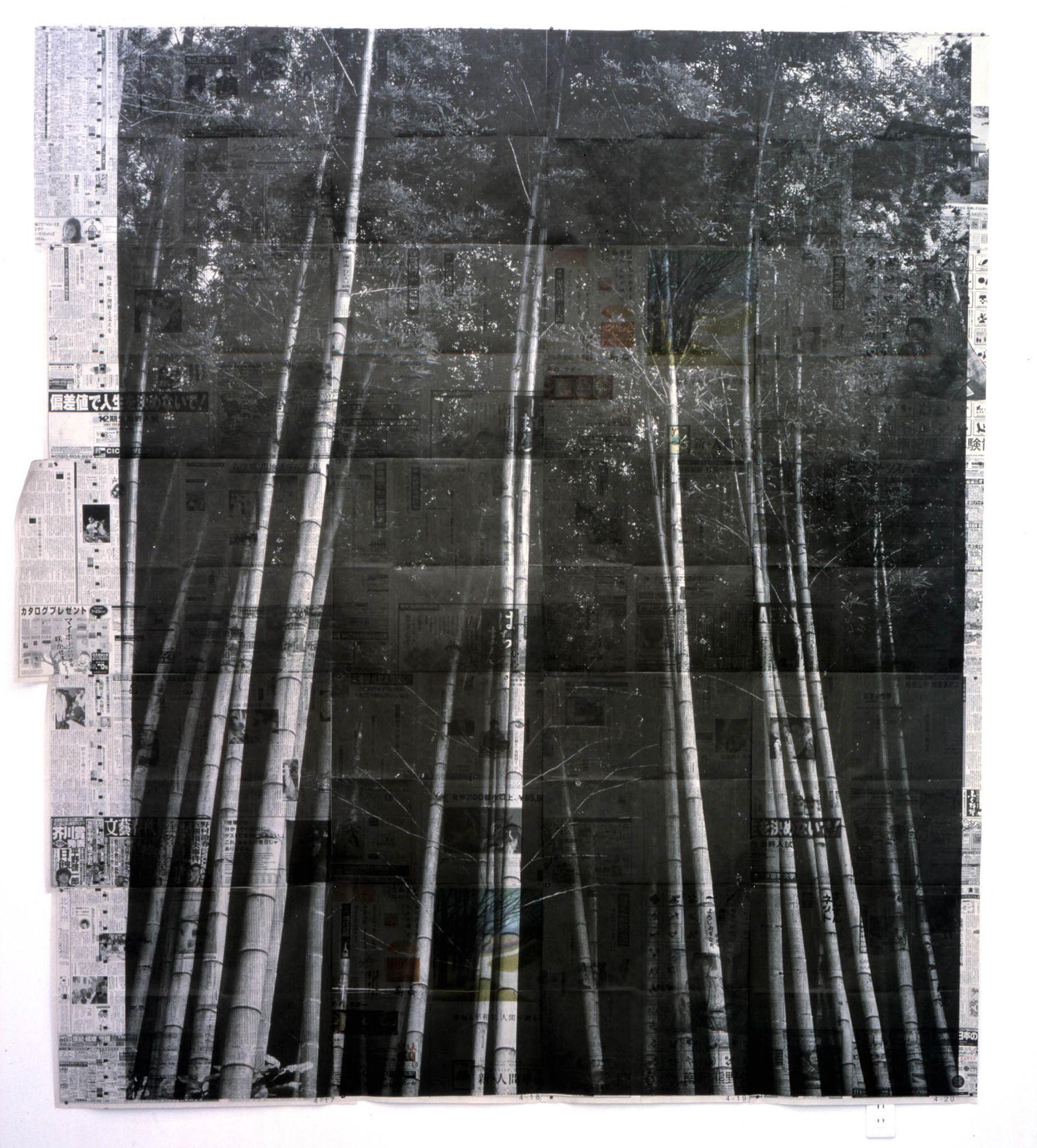 Trees, 1999