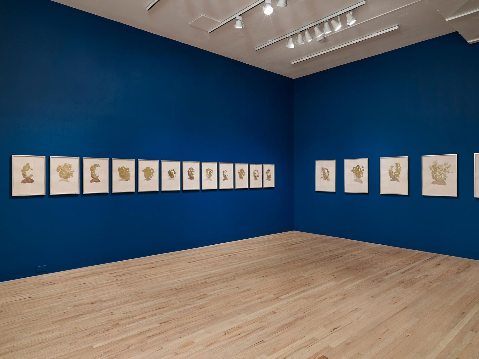 """Lorna Simpson: Works on Paper"", Aspen Art Museum, Aspen, CO 2013"