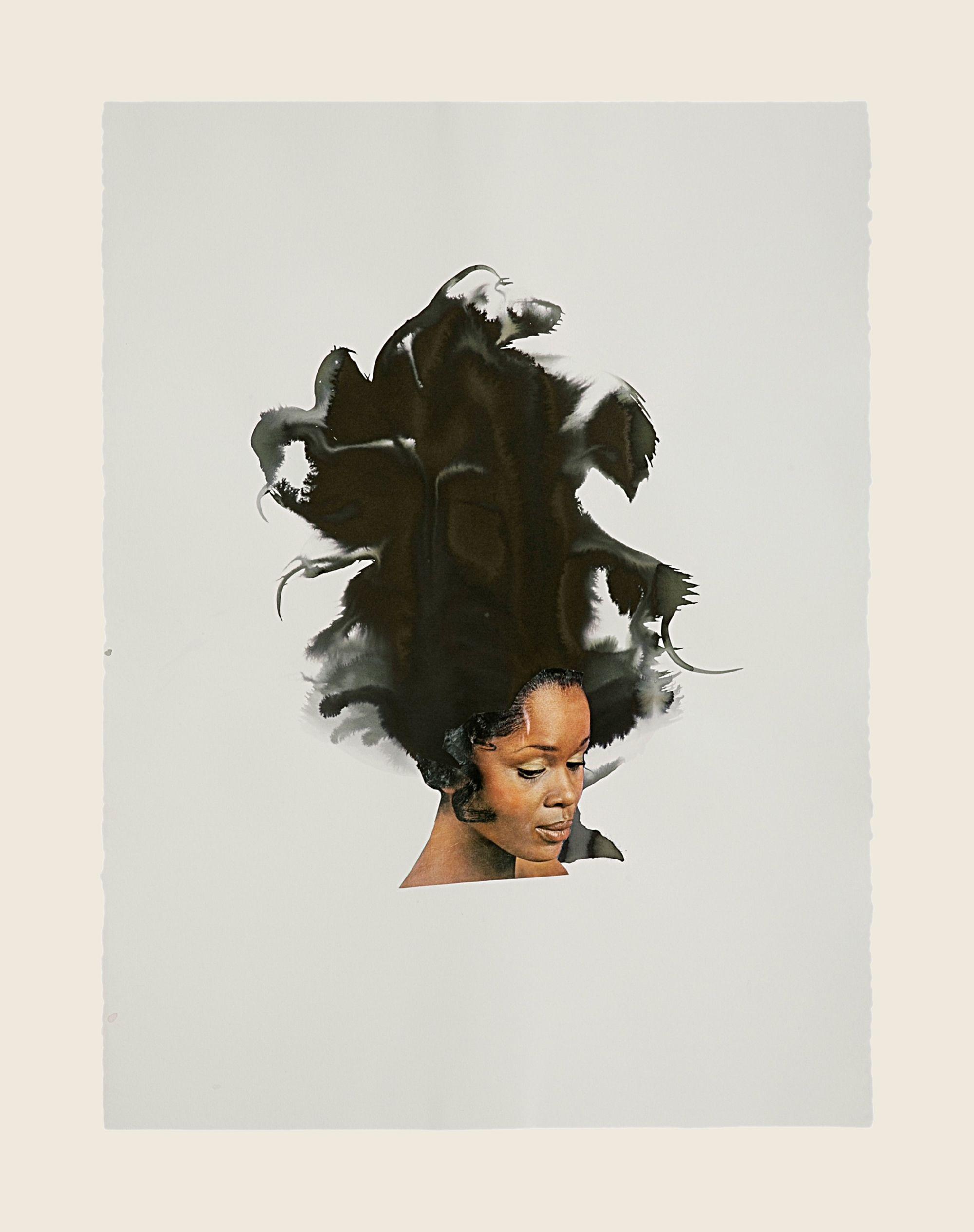 Black Curl, 2013
