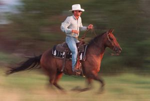 Kansas Cowboys