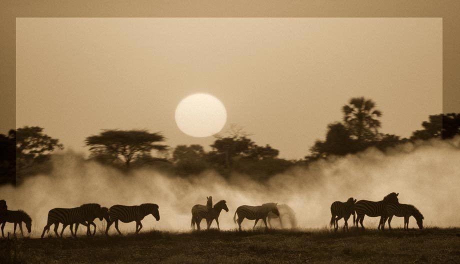 Kwando Dust