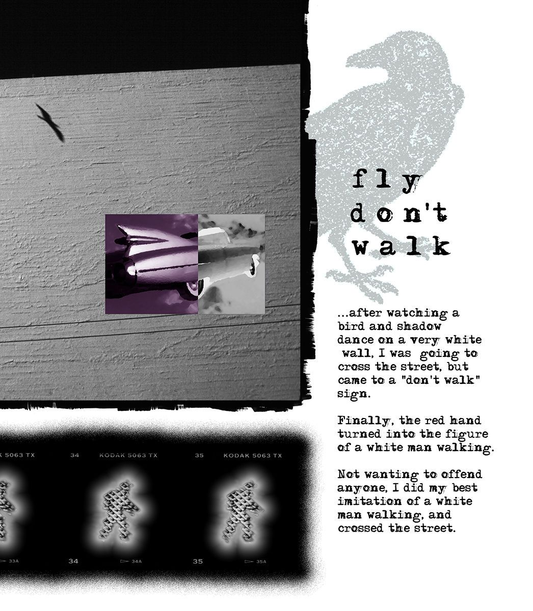 FLY DON'T WALK, digital Print detail