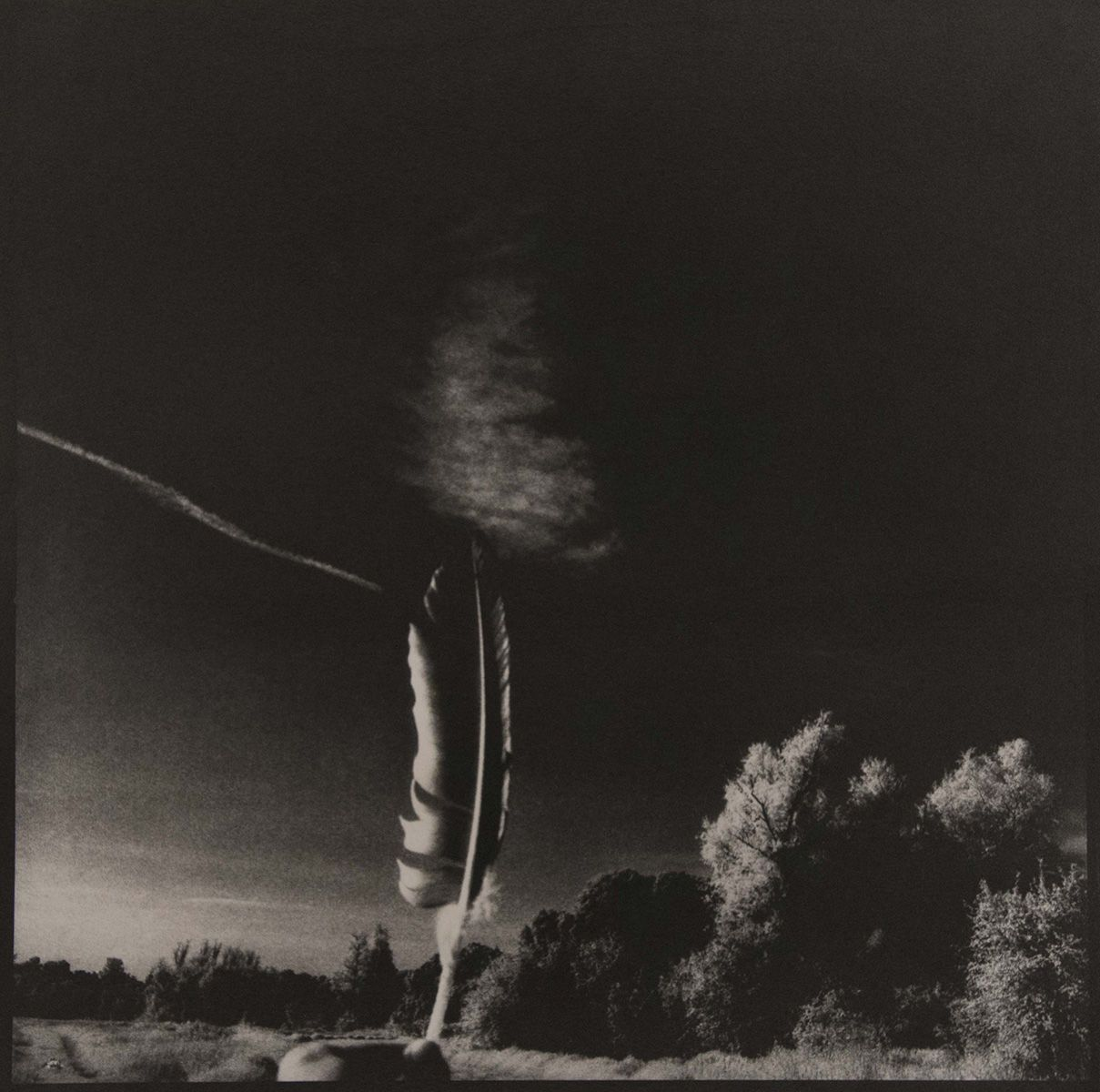 1992, FEATHER SERIES (5 OF 5), platinum photograph 1992
