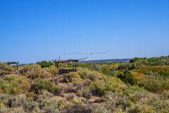 Geese over Coronado National Monument