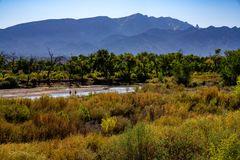 Fishing in the Rio Grande