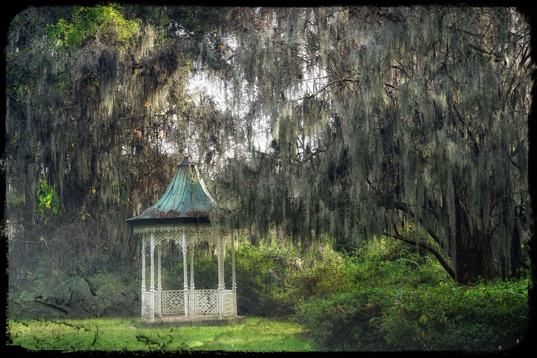 A Gazebo beneath the Spanish Moss
