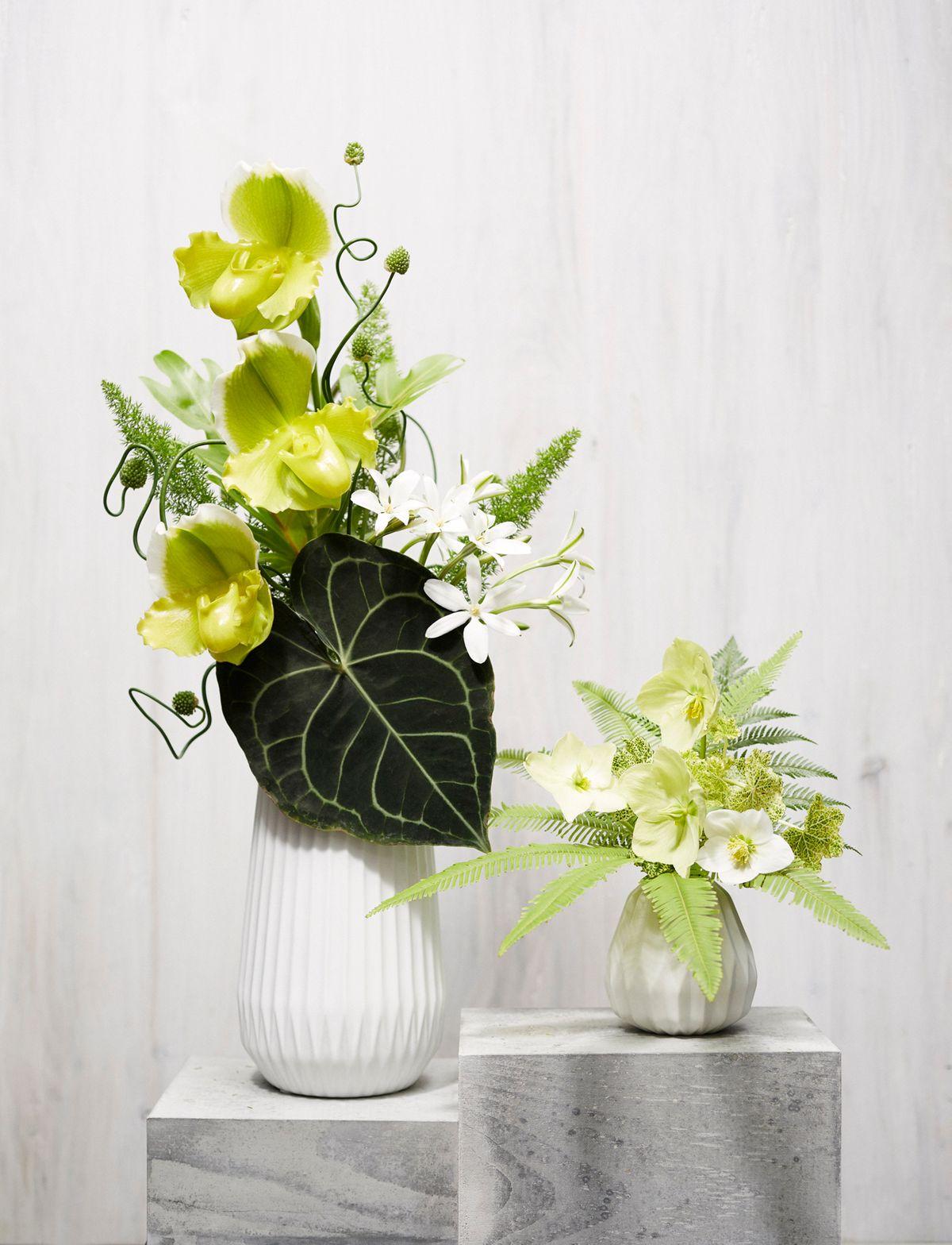 ChristopherWhite_Floral Study_4.jpg