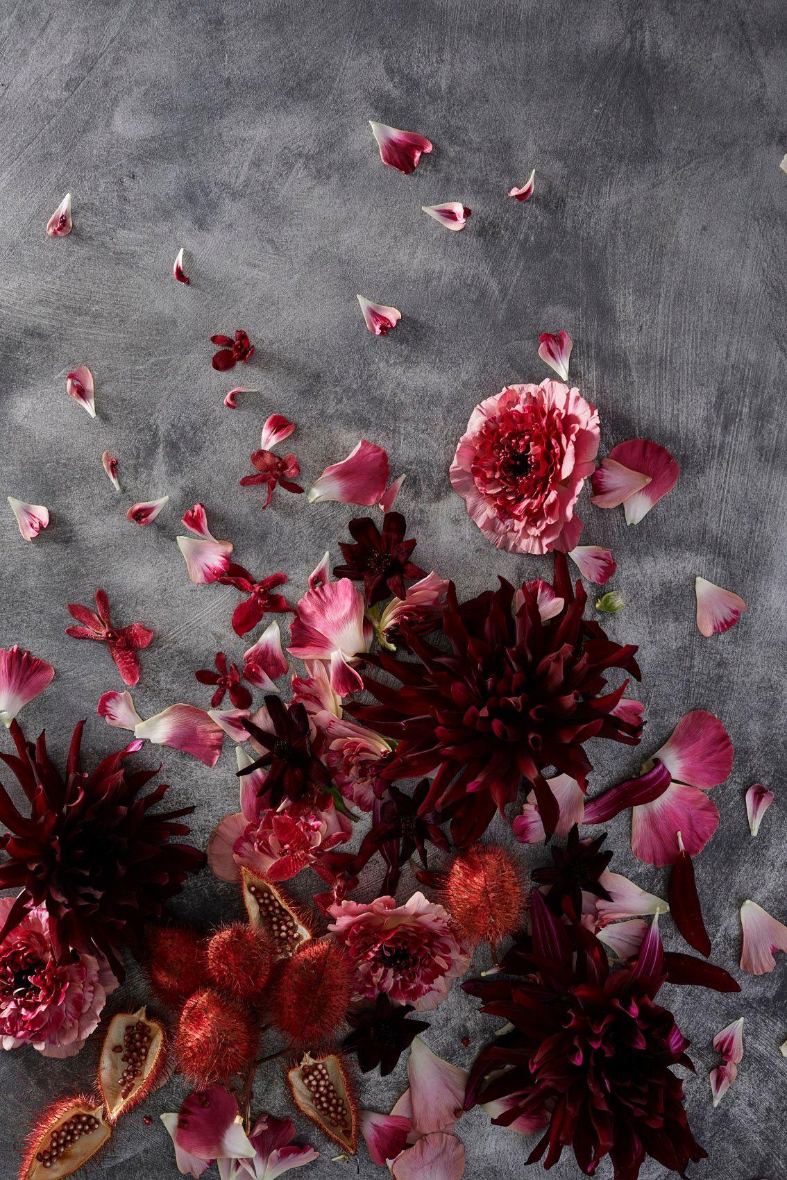 ChristopherWhite_Floral Study_2.jpg