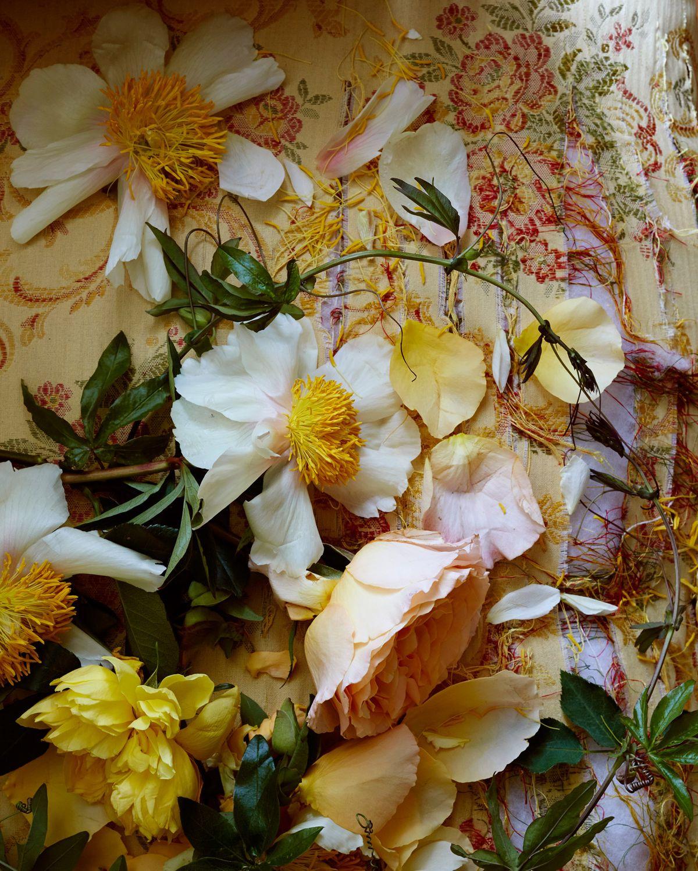 ChristopherWhite_FloralStylist_3.jpg