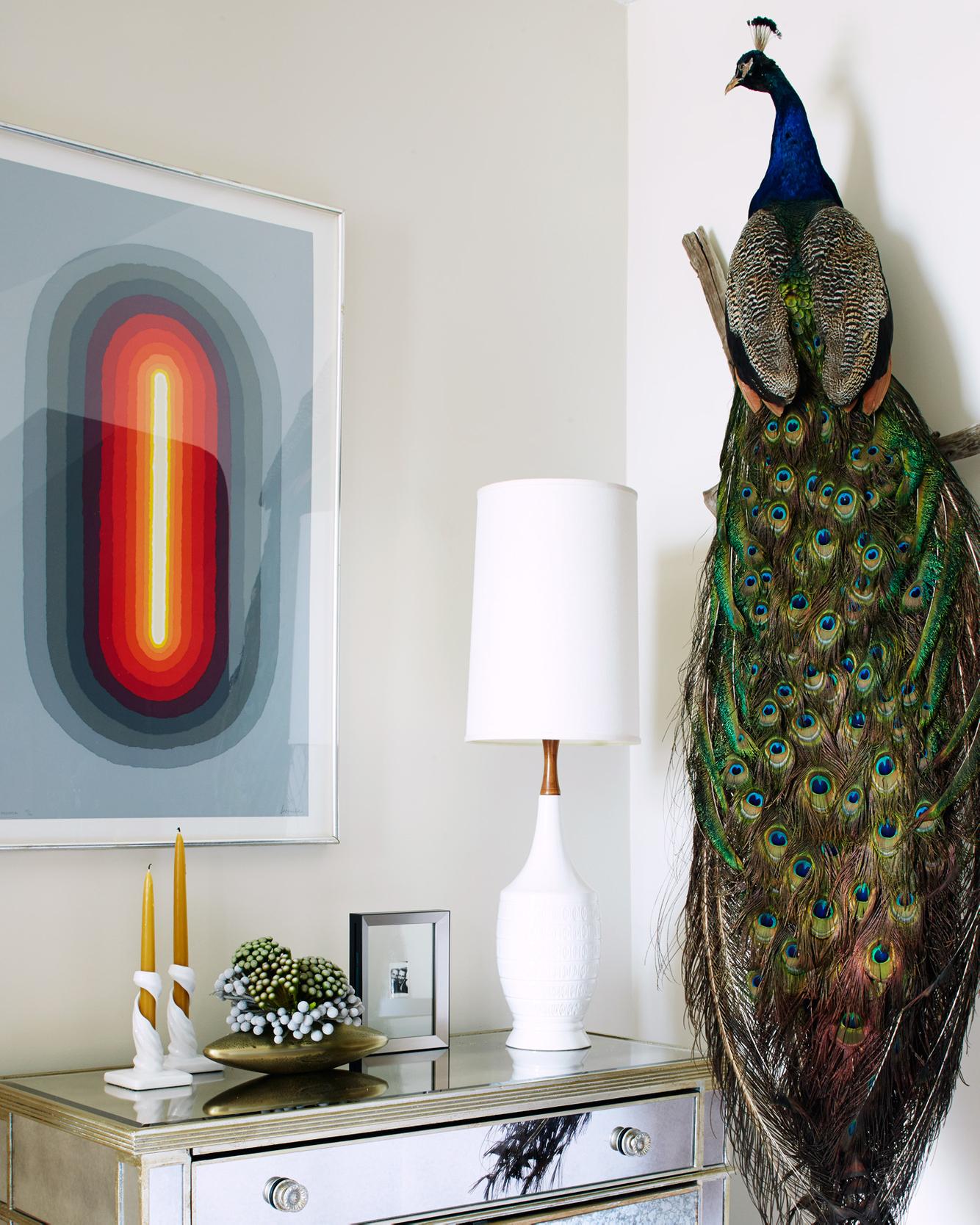 ChristopherWhite-Peacock.jpg