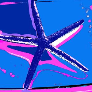 SEA STAR BLUE