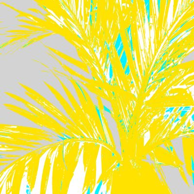 WRC-Palm Frond yellow blue gray.jpg