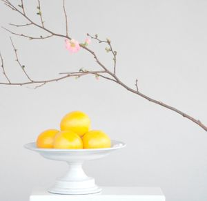 MEYER LEMONS AND CHERRY BRANCH