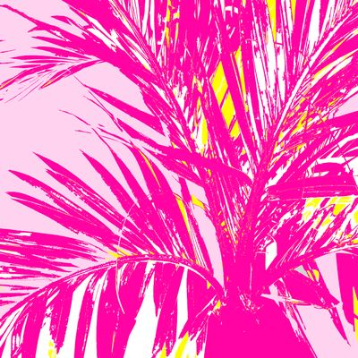 WRC-Palm Frond pink light pink.jpg