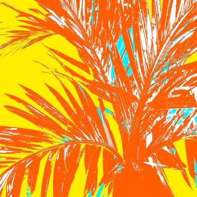 WRC-Palm Frond Orange yellow.jpg