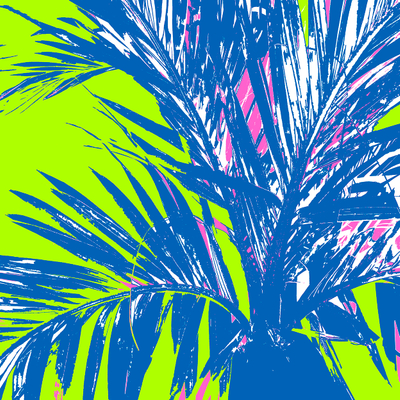 WRC-Palm Frond Navy Lime.jpg