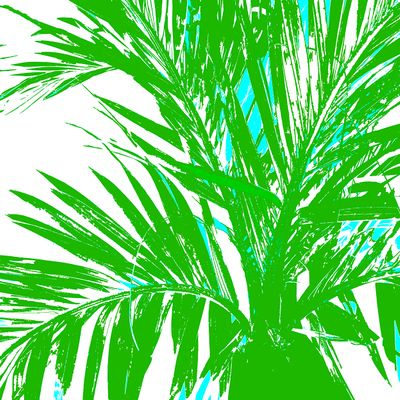 WRC-Palm Fronds Green.jpg