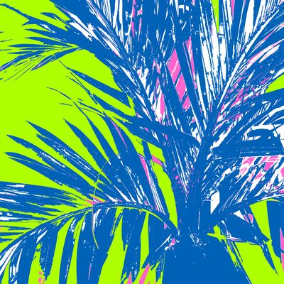 WRC-Palm Fronds Navy Lime.jpg