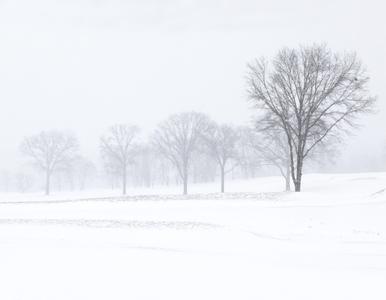 SNOW SERIES No.2