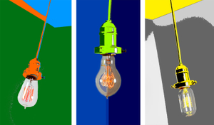 Portrait of a Bulb Triptych