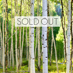 IN THE WOODS EDITION IS SOLD OUT