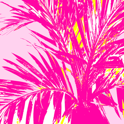 WRC-Palm Frond pink light pink.jpg