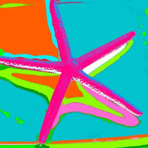 SEA STAR AQUA