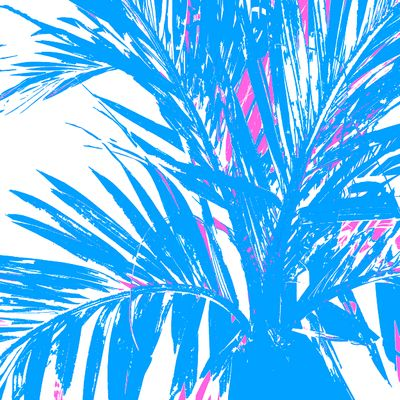 WRC-Palm Fronds Blue pink.jpg