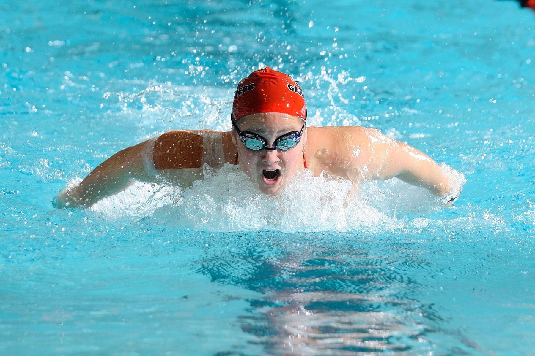 NCAA SWIMMING:  JAN 21 Gardner-Webb at Davidson
