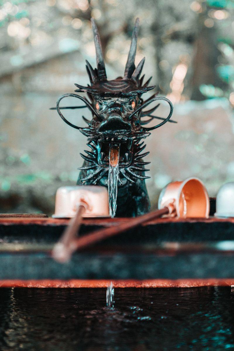Hakone Dragon