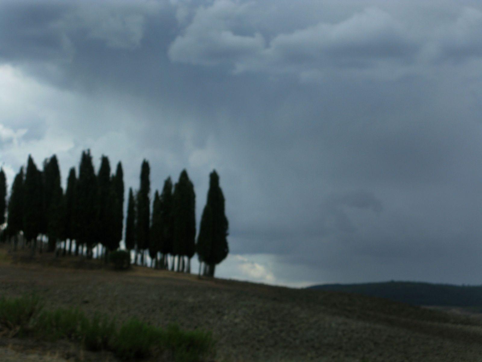 1italian_cyprus.jpg