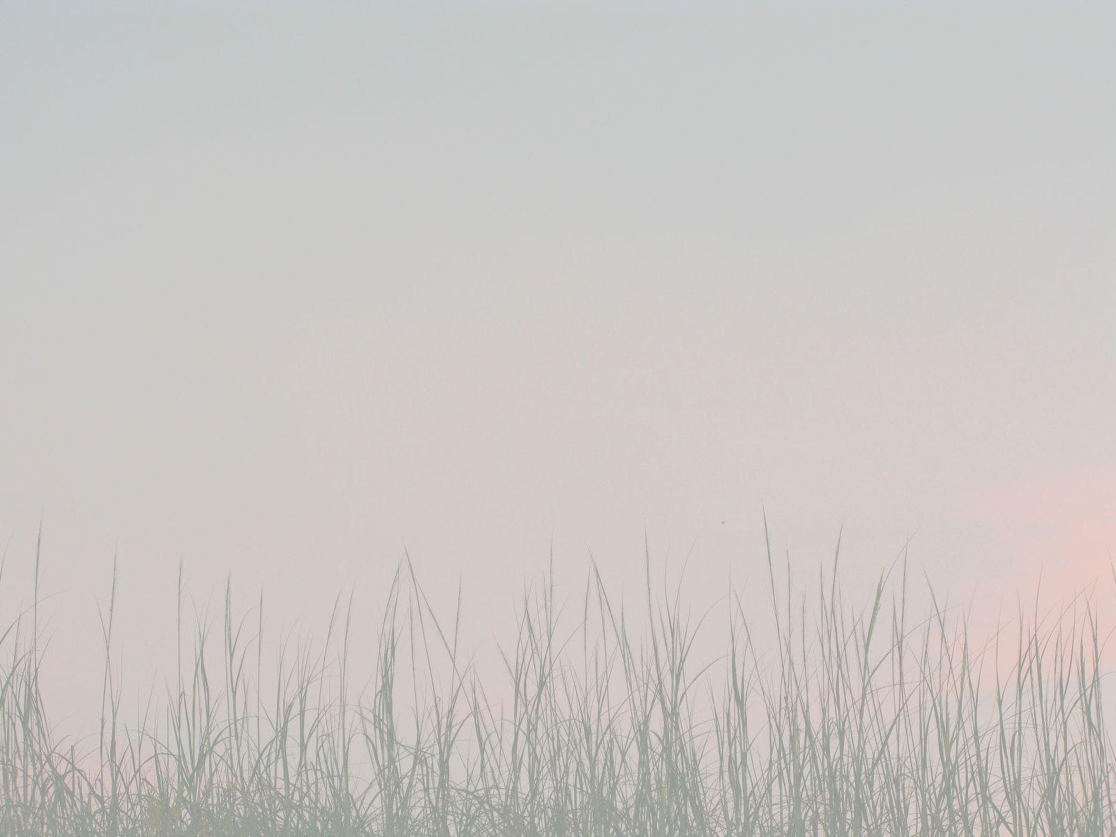 1fair_sky.jpg