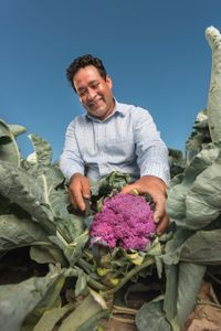 Vegetable Farmer Santos Guadarrama