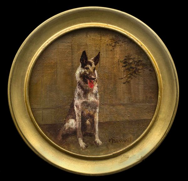 Molly Bolton Portrait of a German Shepherd