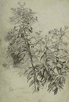 William Trost Richards Blossoming Plant Unframed