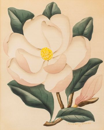 Shirrell W. Graves Magnolia unframed