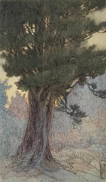 Nelly Littlehale Murphy Tree Study at Twilight unframed