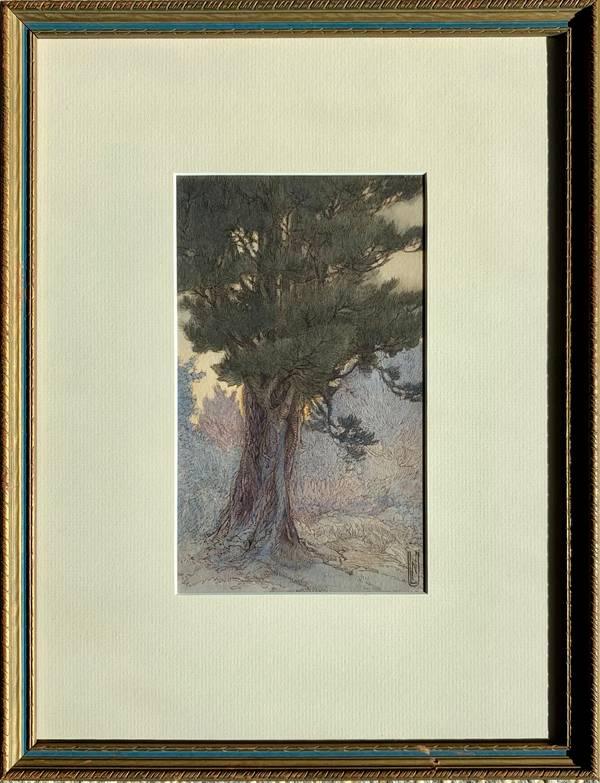 Nelly Littlehale Murphy Tree Study at Twilight