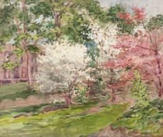 Alice Preble Tucker De Haas Dogwood Blossoms Unframed