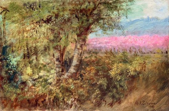 Mary Lord Stevens Wildflowers along a Country Road unframed