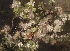 Sophie Ley Apple Blossoms Unframed