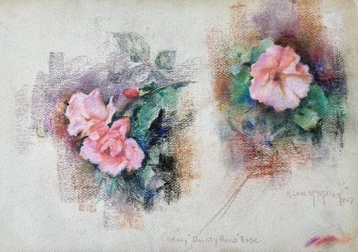 Mary Lane McMillan Study 'Dainty Beso' Rose, 1967 unframed